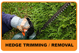Hedge Trimming/Removal